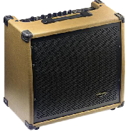 AMPLIFICADOR 60 WATTS - 2 ENTRADAS (CANON-PLUG) - DISTORSION - REVERB